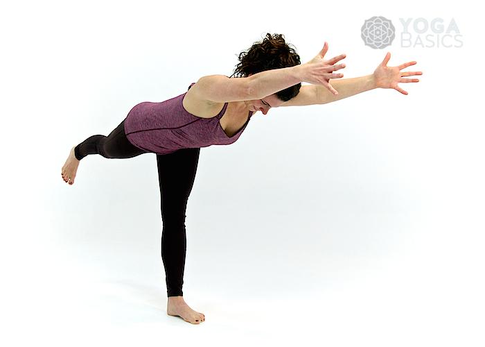 Yoga For Beginners Basics Poses