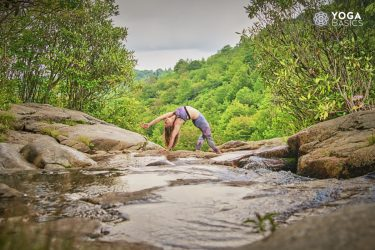 History of Yoga • Yoga Basics