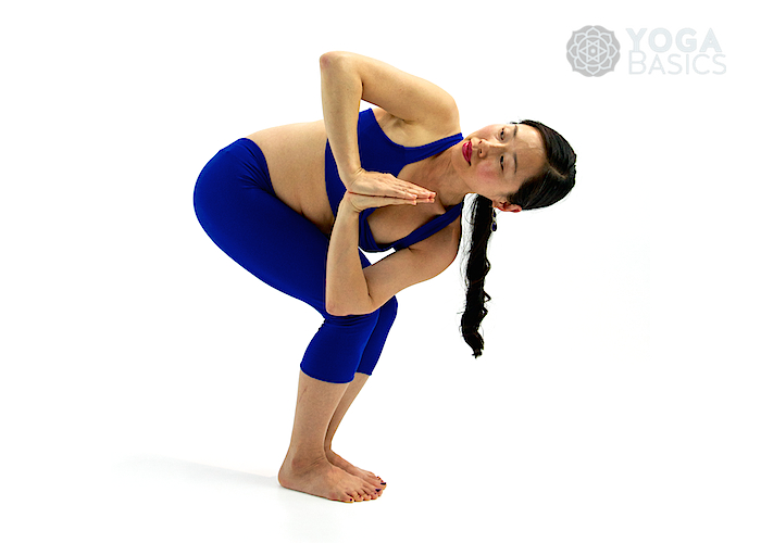 Prasarita Padottanasana Twist Standing Yoga Poses �...