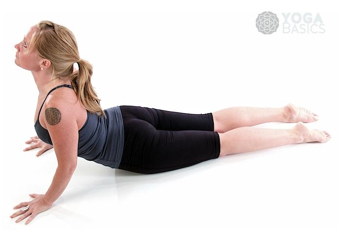 Cobra Pose O Yoga Basics