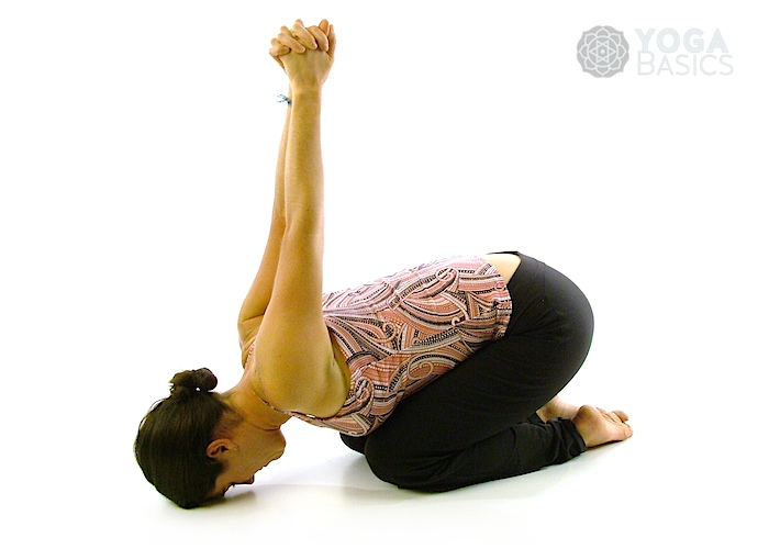 Seated Yoga Seal Pose Yoga Basics