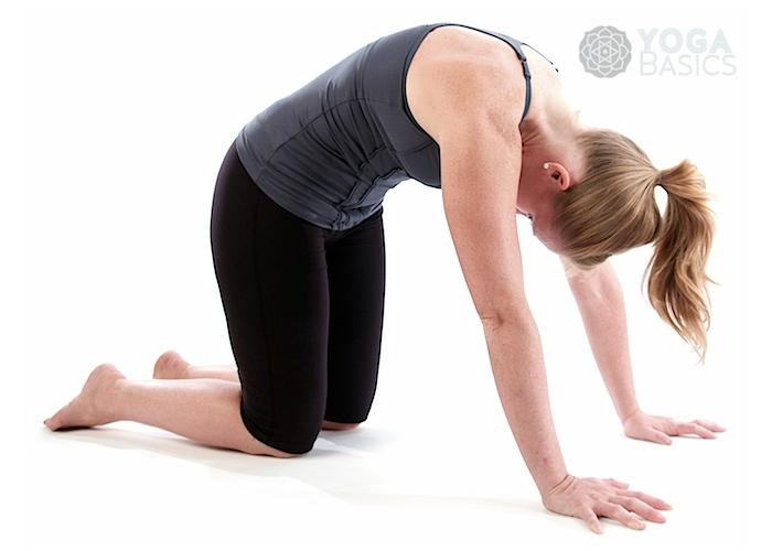 Yoga Poses for Scoliosis • Yoga Basics