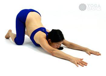 Extended Dog Pose • utthita Svanasana