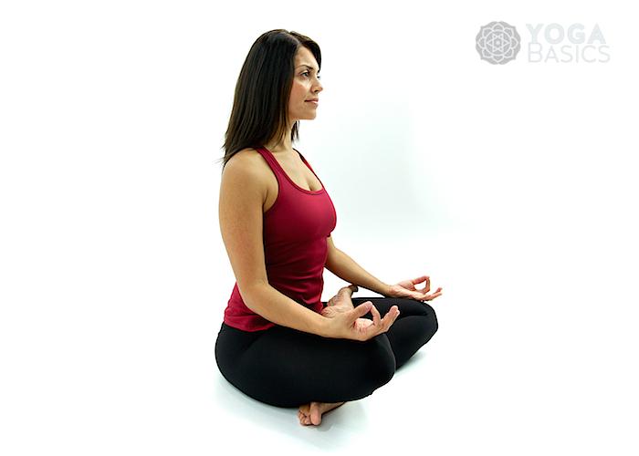Half Lotus Pose Yoga Basics