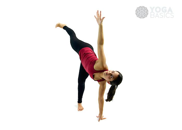 Balancing Poses : Yoga Poses/Asanas/Postures • Yoga Basics