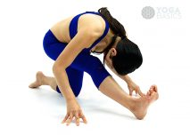 Forward Bending Yoga Poses