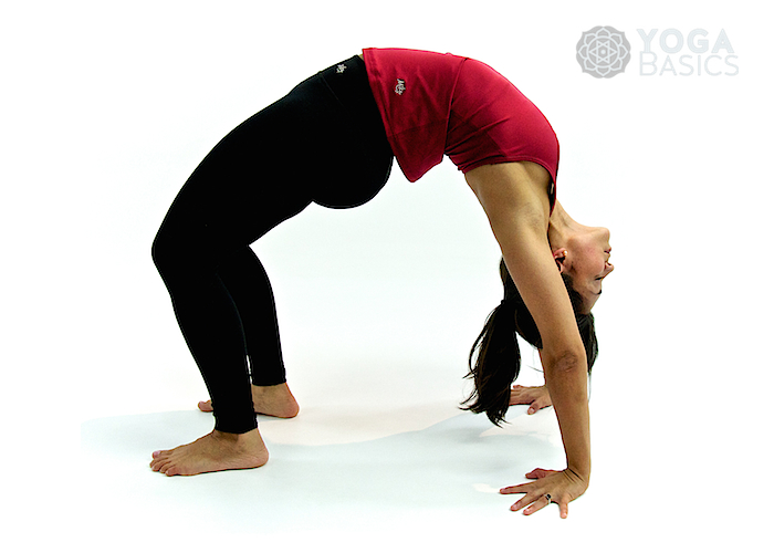 Upward Bow • Urdhva Dhanurasana