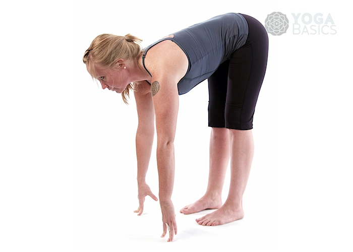 Upward Forward Fold Pose Yoga Basics