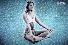 Yoga Quiz: Discover Your Ayurvedic Dosha