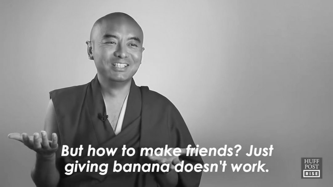 Mingyur Rinpoche Monkey Mind video