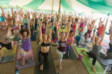 summer yoga festivals