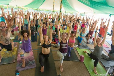summer yoga festivals