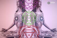 yoga chakra quiz