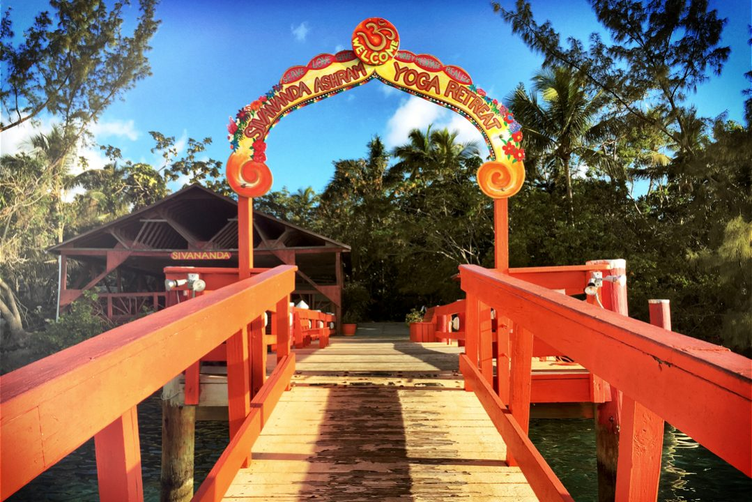 Image result for Yoga ashram