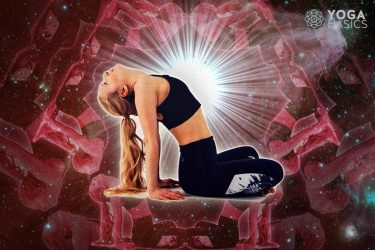 Yoga for Your Zodiac Sign