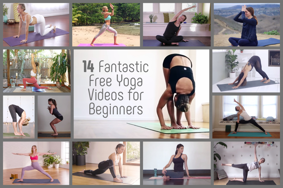 yoga videos for beginners