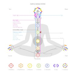 Yogic energy anatomy