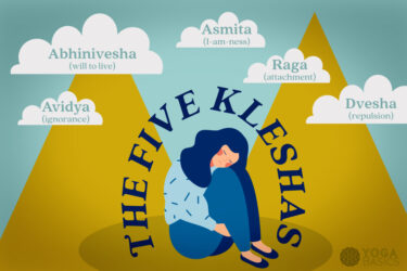 the 5 kleshas